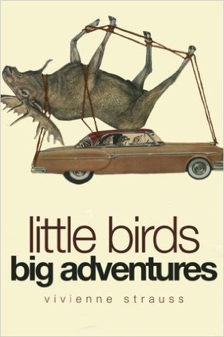 little-birds-big-adventures