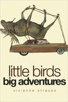 Little Birds Big Adventures by Vivienne Strauss