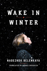Wake in Winter