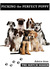 Picking the Perfect Puppy; ...