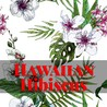 Hawaiian Hibiscus Coloring Book