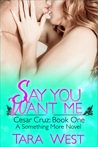 Say You Want Me (Something More #5)