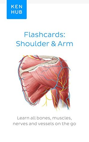 Flashcards: Shoulder & Arm: Learn all bones, muscles, nerves and vessels on the go (Flashcard ebooks from Kenhub)