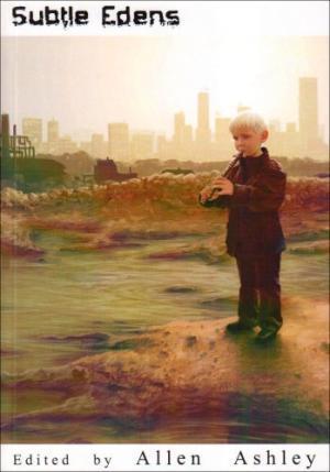 Subtle Edens: An Anthology of Slipstream Fiction