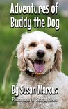 Adventures of Buddy the Dog: A Children's Picture Book about a Dog for Ages 2-5