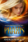 Praxis Novellas (Mosaic Chronicles, #2)