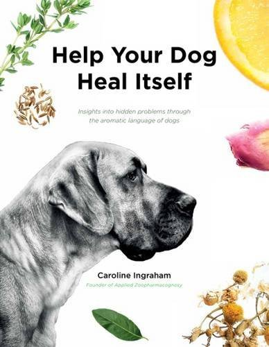 Help Your Dog Heal Itself: Insights into Hidden Problems Through the Aromatic Language of Dogs