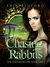 Chasing Rabbits (The Underground, #1) by Erin R. Bedford
