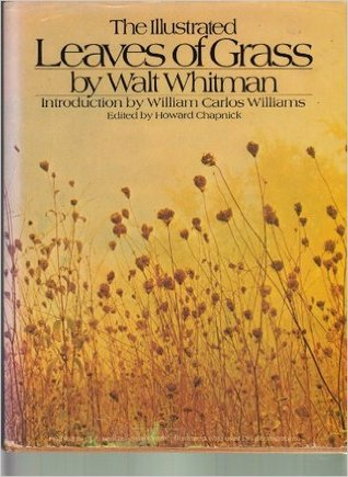 a plot and character analysis of walt whitmans leaves of grass Thanks to his poetry, most notably his lifelong work-in-progress leaves of grass, whitman is remembered as a free-spirited, innovative poet and transcendentaliston monday, however, a serialized novella he published anonymously in 1852 was revealed to.