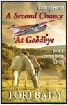 Coming Home: A Second Chance at Goodbye
