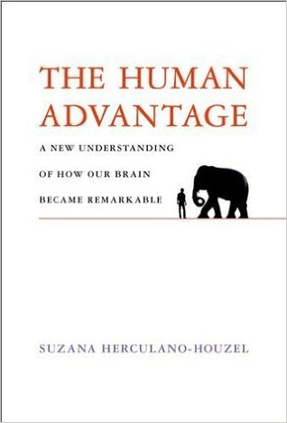The Human Advantage: A New Understanding of How Our Brain Became Remarkable