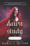 Dawn Study (Soulfinders, #3)