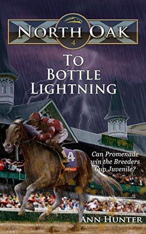 To Bottle Lightning by Ann  Hunter