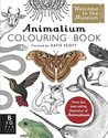 Animalium Colouring Book (Welcome to the Museum)
