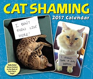 Cat Shaming 2017 Day-to-Day Calendar