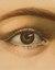 John Derian Picture Book by John Derian