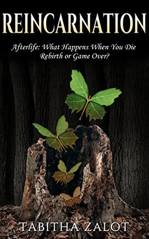 Reincarnation: Afterlife: Life After Death - What Happens When You Die? Rebirth or Game Over? (Wheel of Life, OBE, Nirvana, Heaven, Paradise, Buddhism, Hinduism Book 1)