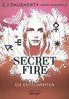 Secret Fire by C.J. Daugherty