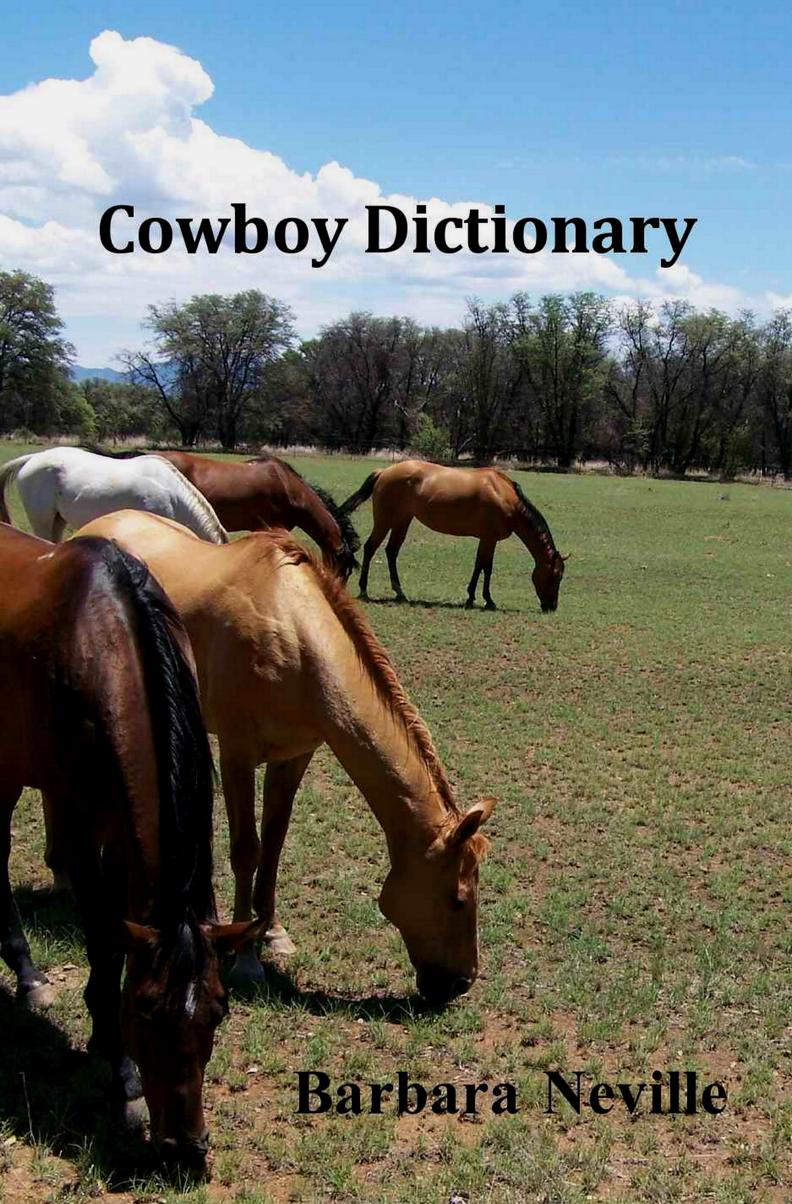 Cowboy Dictionary: The Official Companion to the Spirit Animal Series