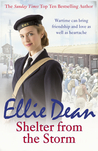 Shelter From The Storm (Beach View Boarding House/Cliffehaven #11)
