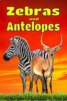 Zebras and Antelopes by Francois Bissonnette