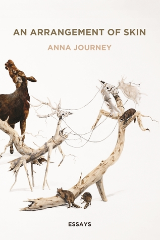 An Arrangement of Skin by Anna Journey
