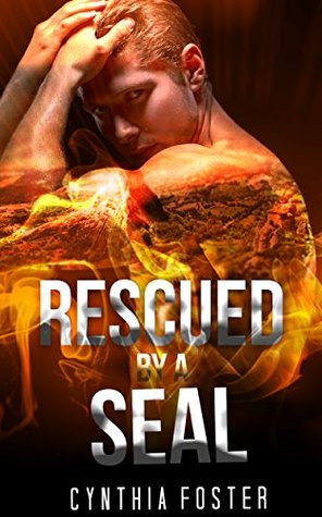 MILITARY ROMANCE: Rescued By A Seal (An Alpha Male Bady Boy Navy SEAL Contemporary Mystery Romance Collection)