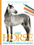 Isolated Horse Images for A...