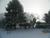 The Snow Documents
