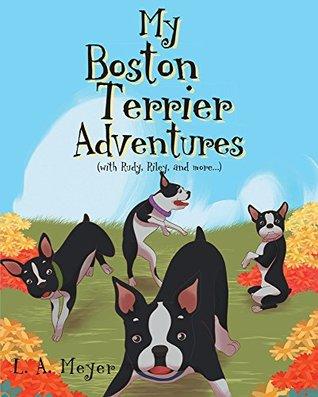 My Boston Terrier Adventures
