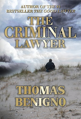 The Criminal Lawyer (Good Lawyer, #2)