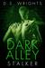 Dark Alley: Stalker (Dark A...