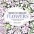 Drawn to Fabulous Flowers (...