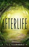 Afterlife in America