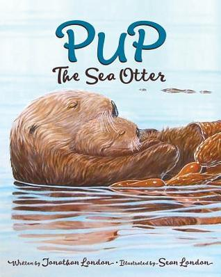 pup-the-sea-otter