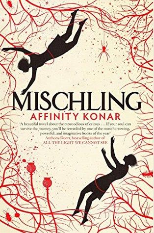 Image result for mischling novel