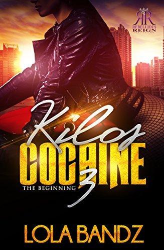 Kilos Cocaine 3
