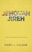 Jehovah-Jireh: The God Who ...