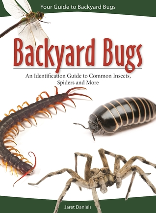 Backyard Bugs: An Identification Guide to Common Insects ...