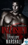 Unleashed (Mr. Black #1)