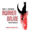 Catharsis (Awaken Online #1)