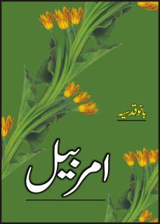 Amar Bail / امر بیل
