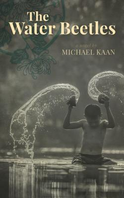 The Water Beetles by Michael Kaan