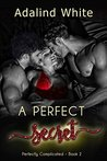 A Perfect Secret (Perfectly Complicated Book 2)