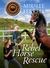 Rebel Horse Rescue by Miralee Ferrell
