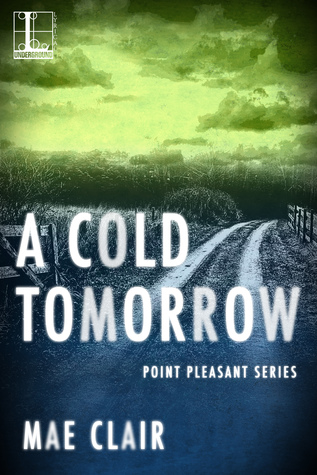 A Cold Tomorrow(Point Pleasant 2)