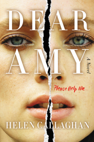Image result for dear amy book