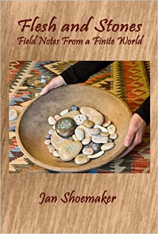 Flesh and Stones: Field Notes From a Finite World