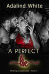 A Perfect Lie (Perfectly Complicated Book 3)