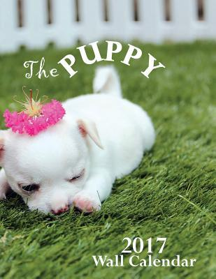 The Puppy 2017 Wall Calendar by Aberdeen Stationers Co